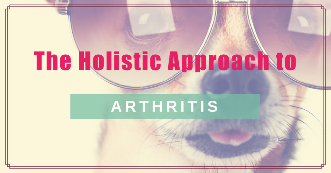 The Holistic Approach to Arthritis