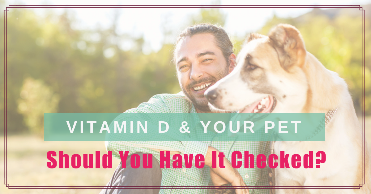 Vitamin D and Your Pet – Should you Have it Checked?