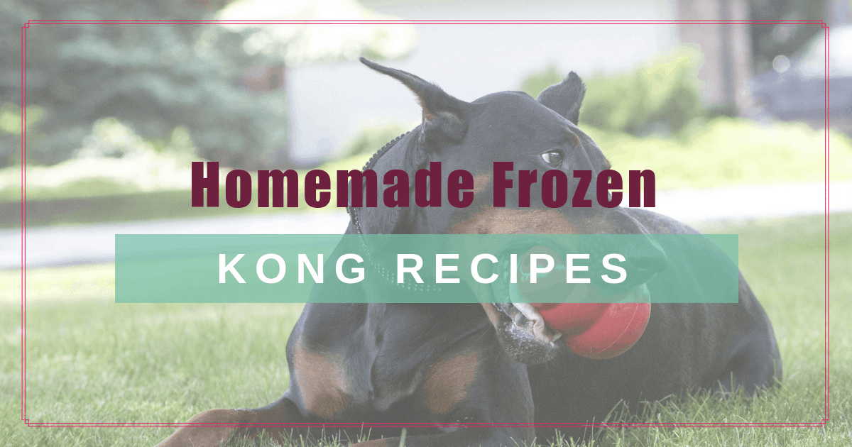 Homemade Frozen Kong Recipes